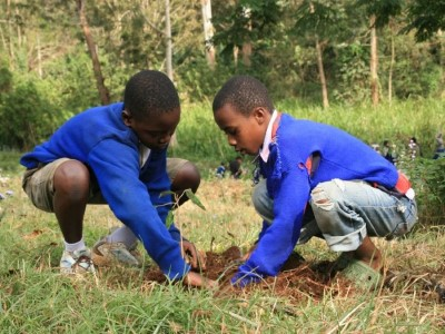 tanzania-tree-planting-project.jpg
