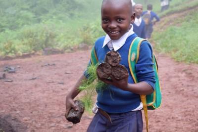 lg usa reforesting tanzania