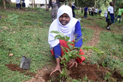 506 reforesting tanzania