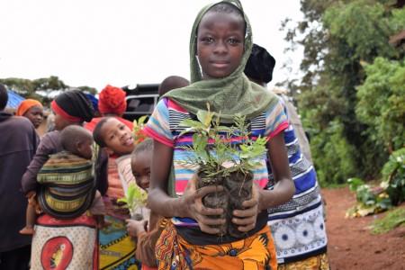logitech reforesting tanzania