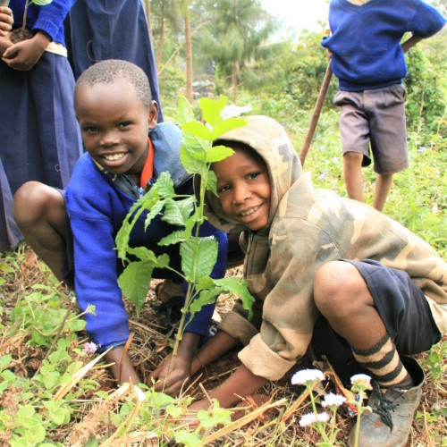 tanzania green schools program