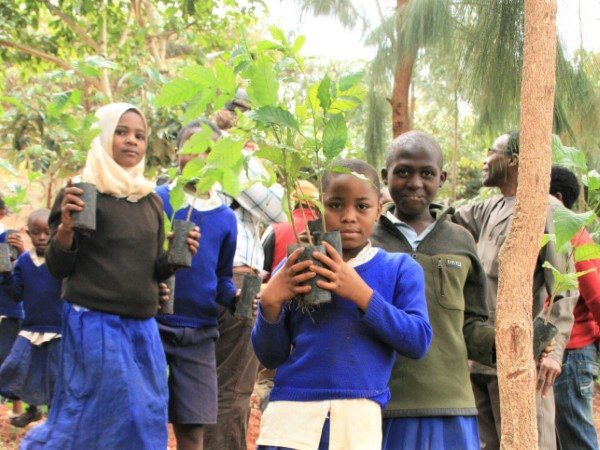 appway reforesting tanzania