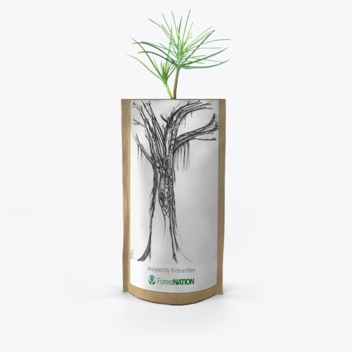 ForestNation-pouch-Ndene-1
