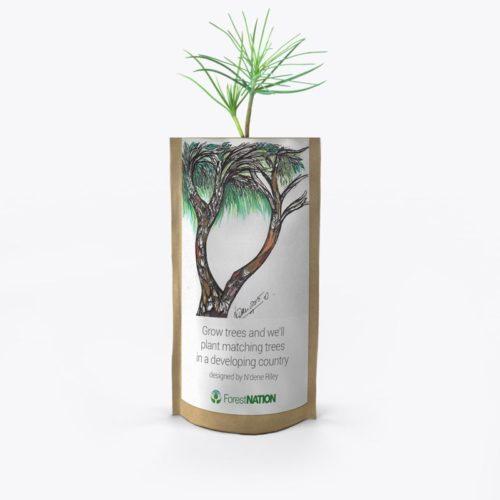 ForestNation-pouch-Ndene-2