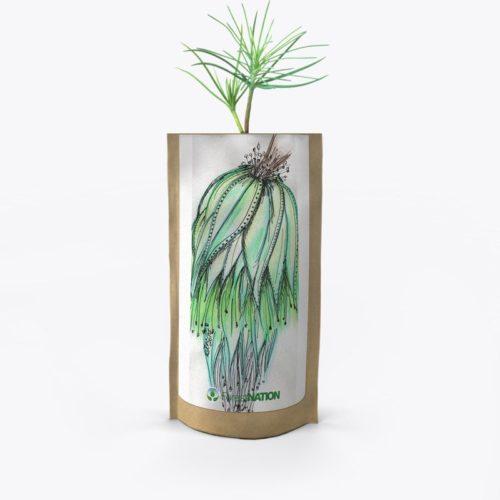 ForestNation-pouch-Ndene-4