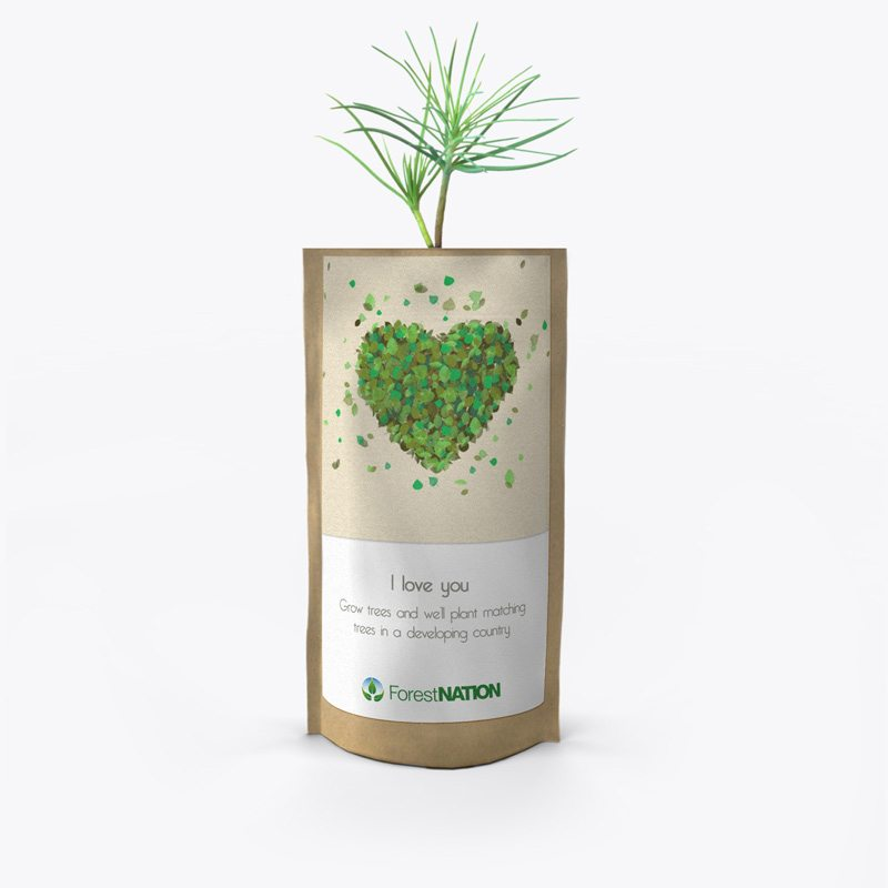 ForestNation-pouch---love-1-800