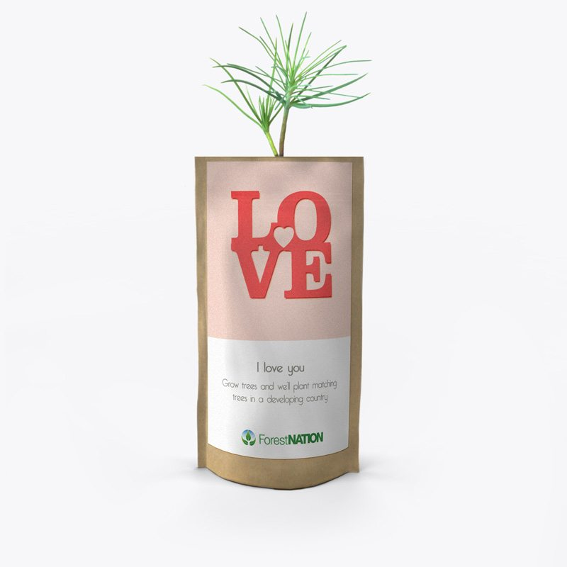 ForestNation-pouch---love-2-800