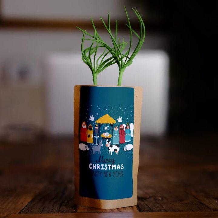 Traditional Nativity Christmas Greetings 1