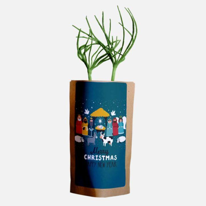 Traditional Nativity Christmas Greetings 3