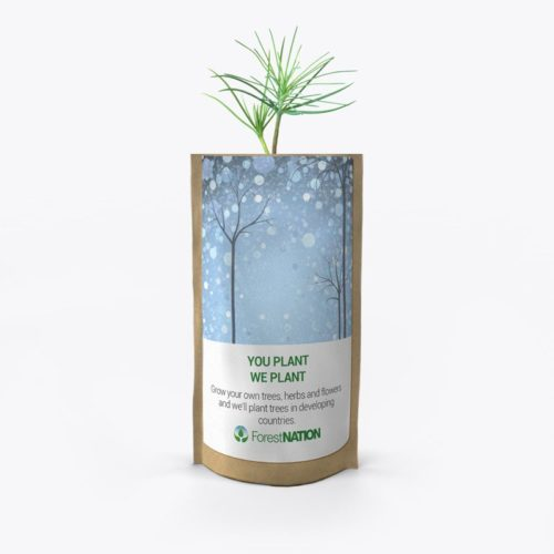 Season's Greetings Blue Forest Growing Kit