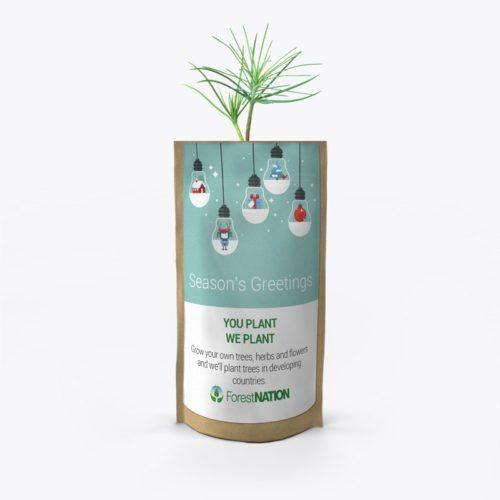 Season's Greetings Light Bulbs Growing Kit