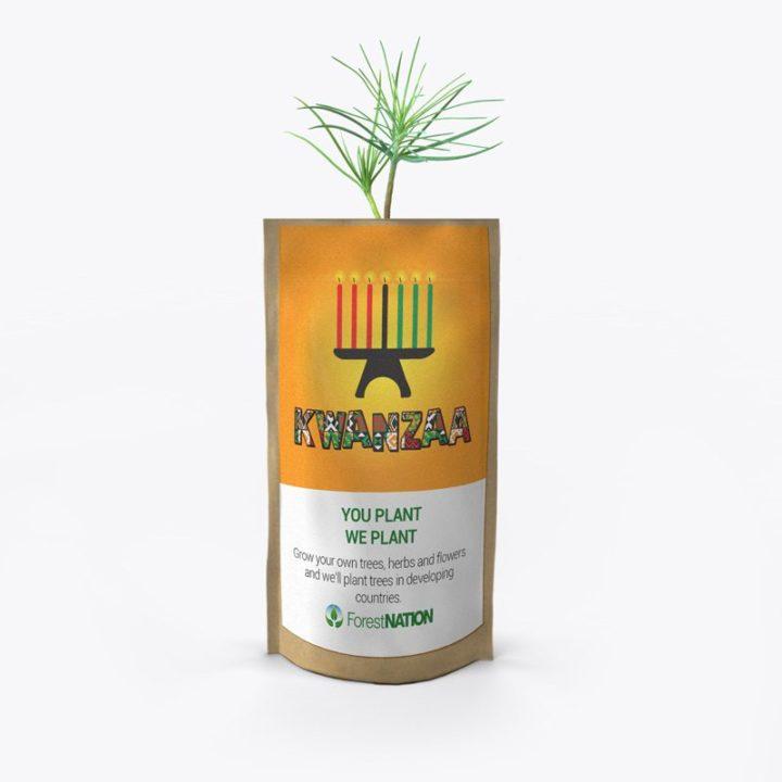 Happy Kwanzaa Growing Kit