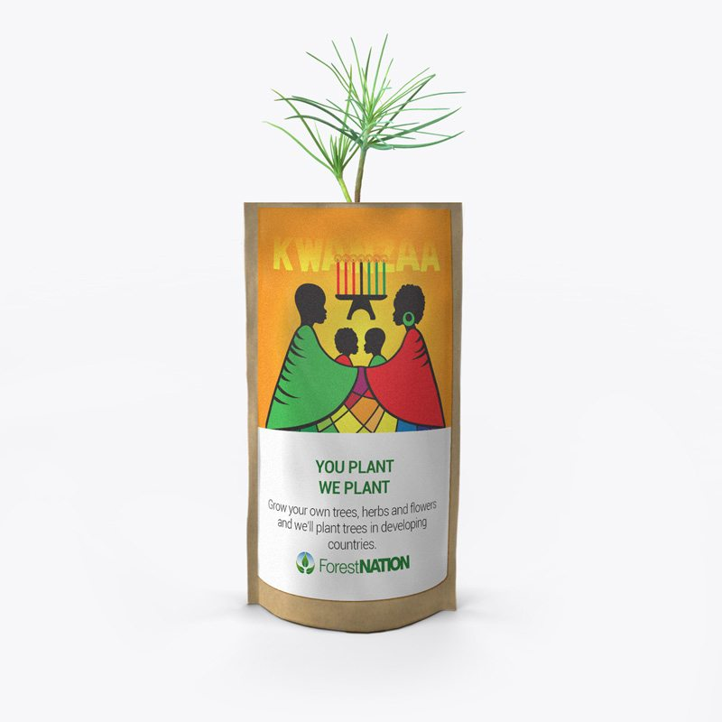 Happy Kwanzaa Growing Kit