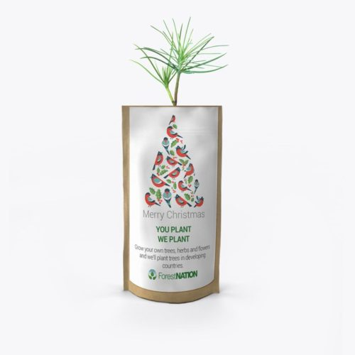 Merry Christmas Birdy Tree Growing Kit