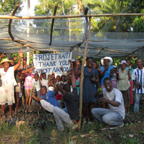 Haiti Tree Planting ForestNation