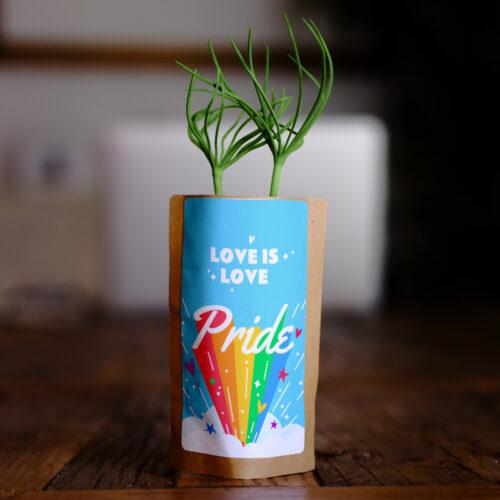 Pride Love is Love