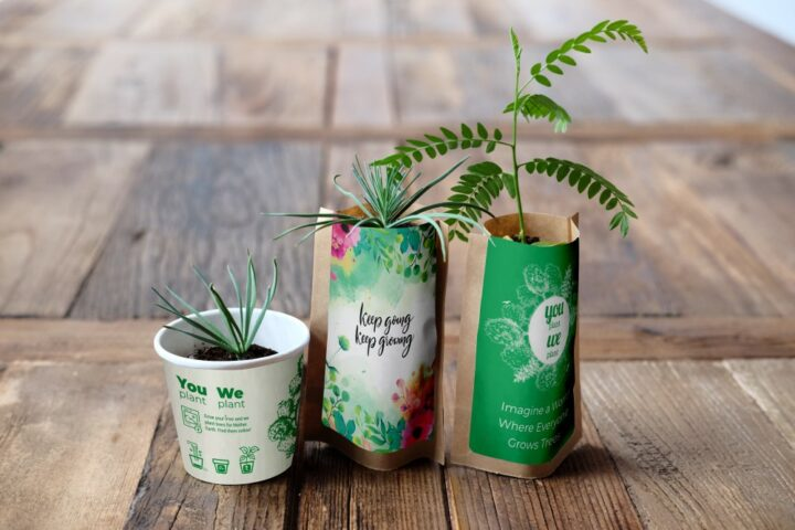 You Plant We Plant Tree Kits Happy Pack