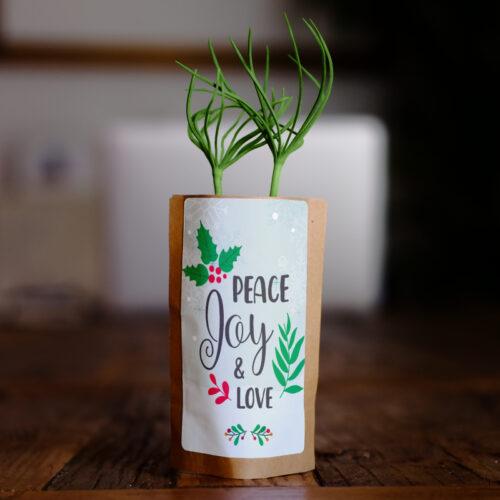 peace joy love christmas