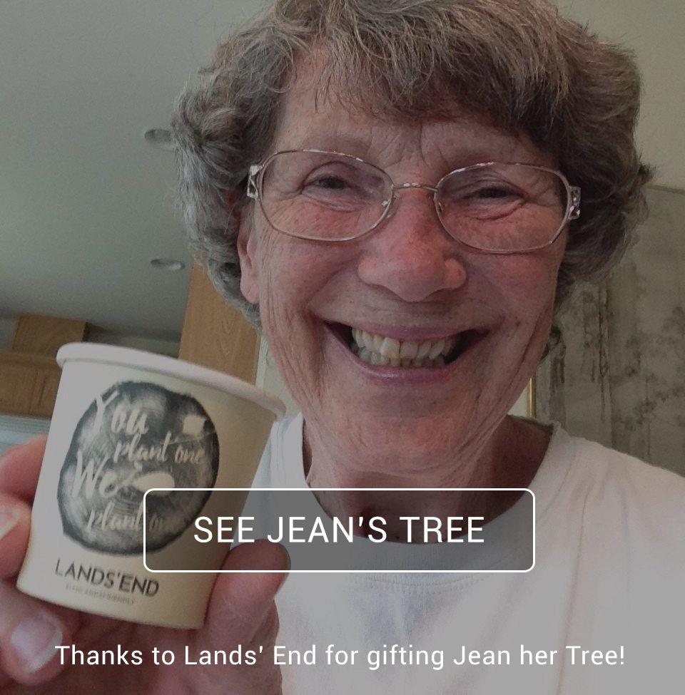 Jean's-Tree-Kit---Landsend