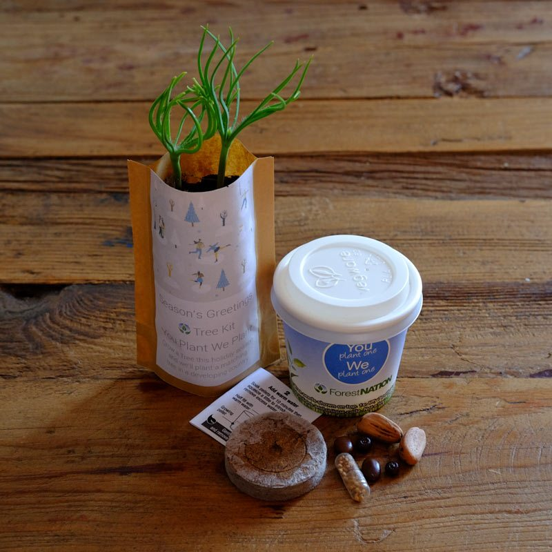 tree-kit-cup-and-pouch