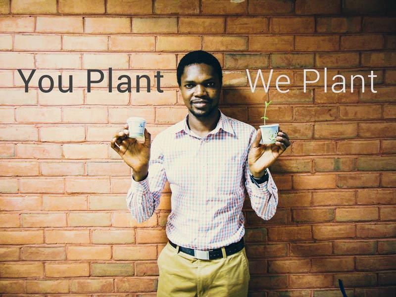 You Plant We Plant