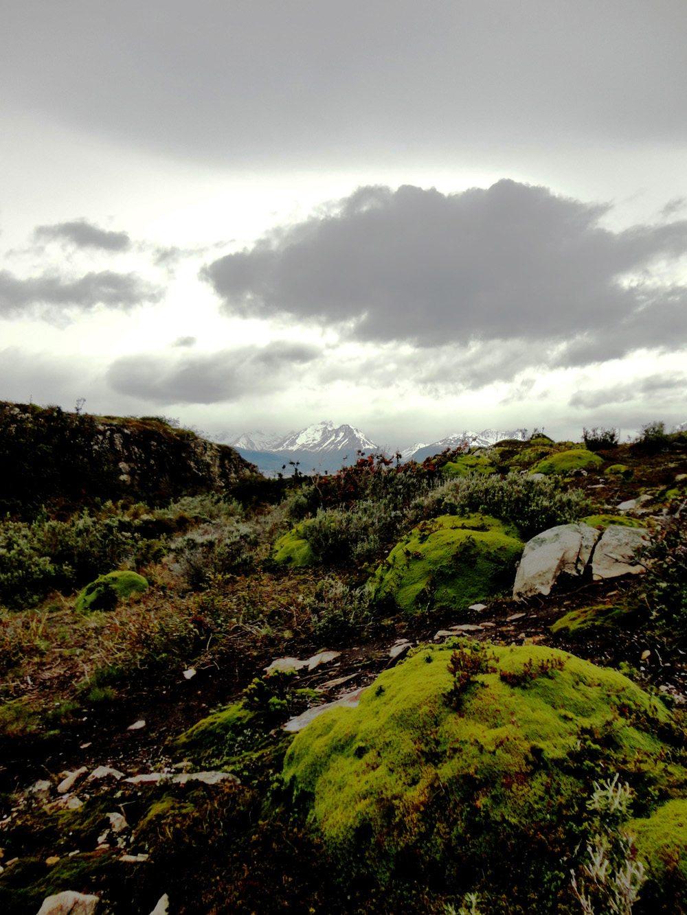 Isla-bridges-ushuaia