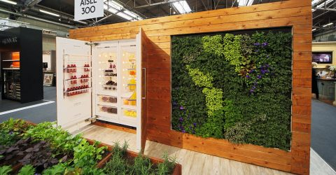 Green Trade Shows ForestNation