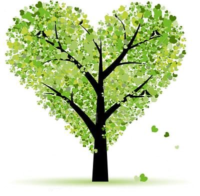 Plants our green friends essay