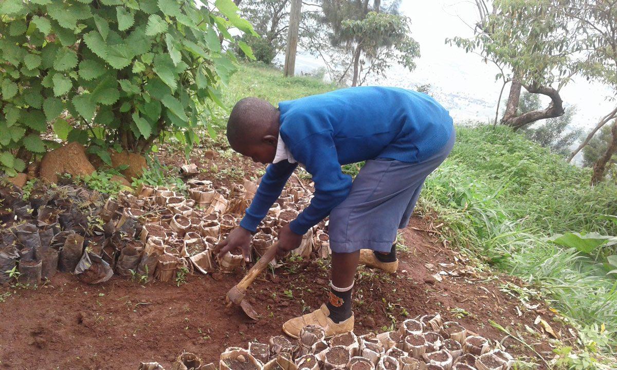 Tree-PLanting-Tanzania