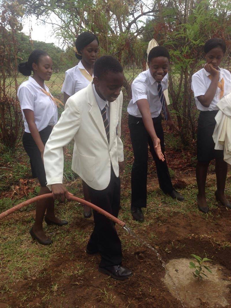 Taya-Chakarisa-Tree-Planting
