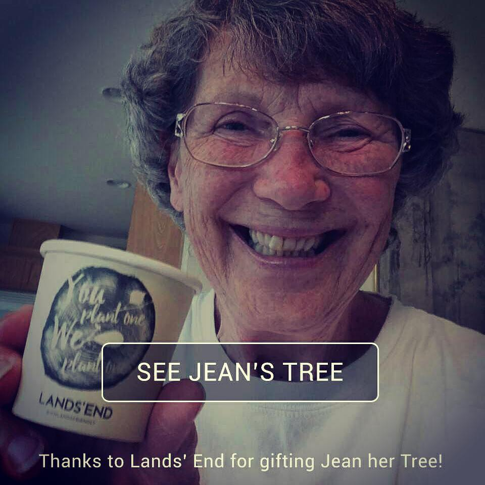 Thanks to Jean for growing her tree @landsend @themastershift http://buff.ly/2am8M4o