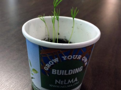 Nelma-Tree-Kit