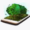 ForestNation 10