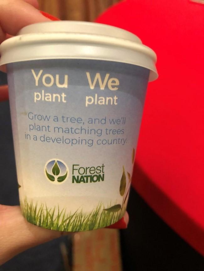 eventures youplantweplant trees