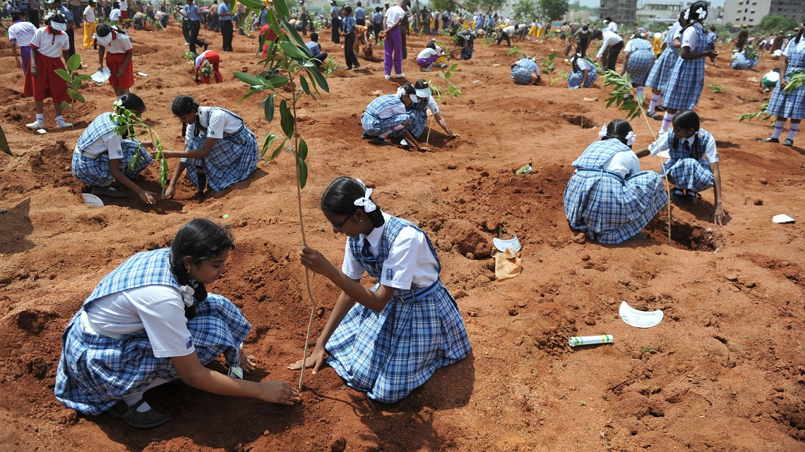 How World Governments are Reforesting our Future 5