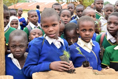 aka nyc reforesting tanzania