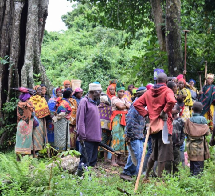 community protecting forests tanzania