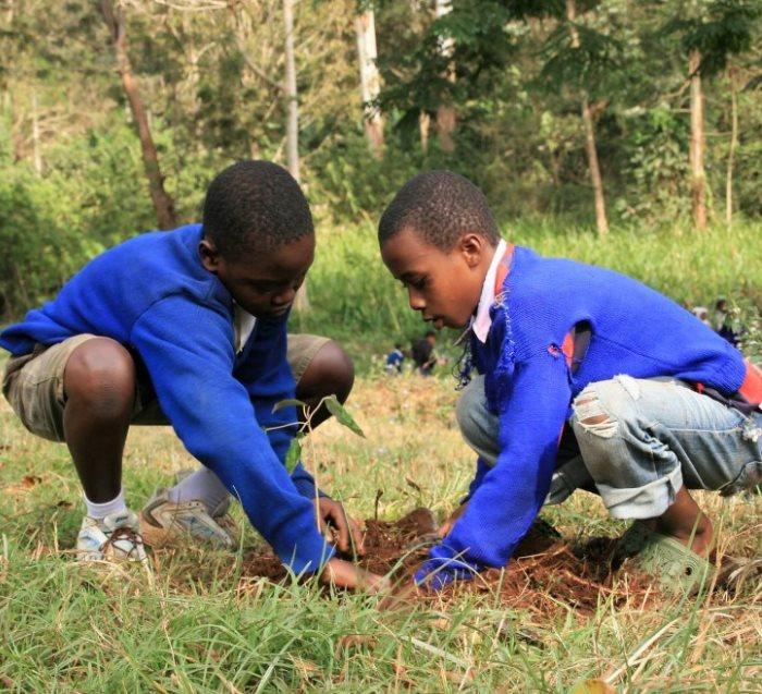 planting seasons tanzania