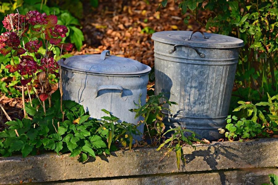 zero waste home dream - reducing household waste