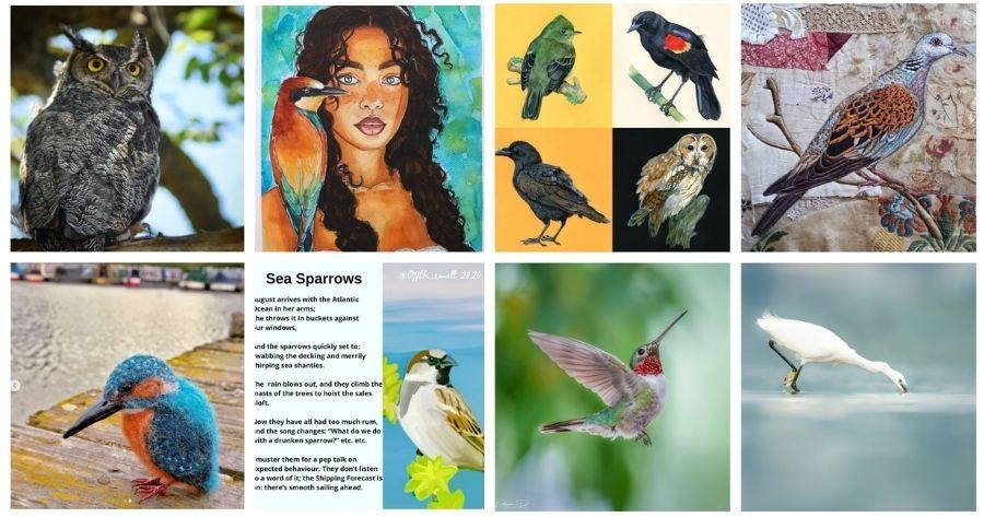 Forest Guardians Birds 1