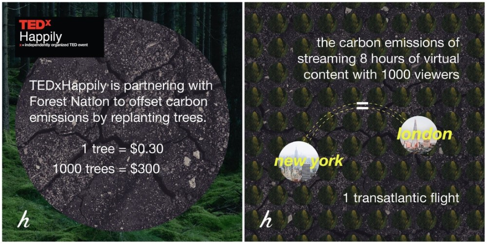 TEDxHappily ForestNation impact