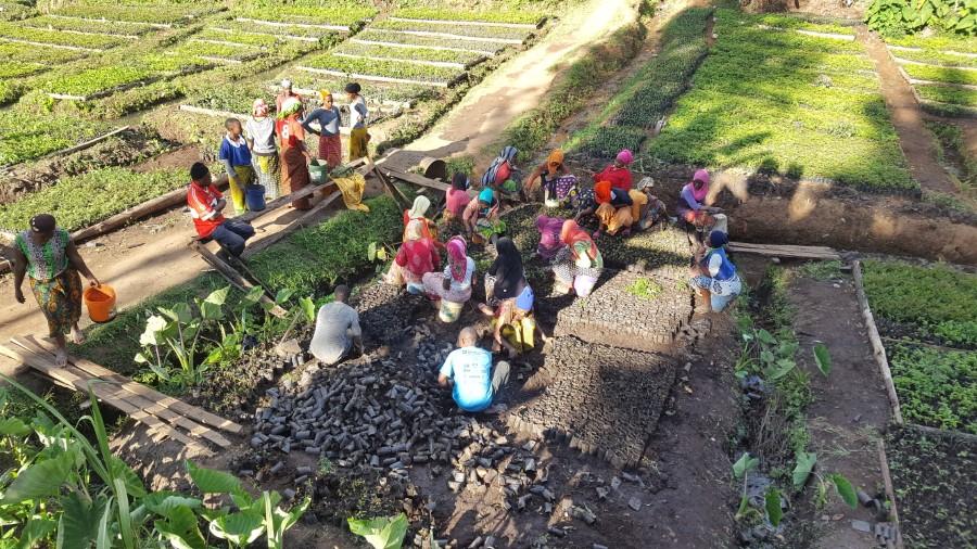 Tanzania project