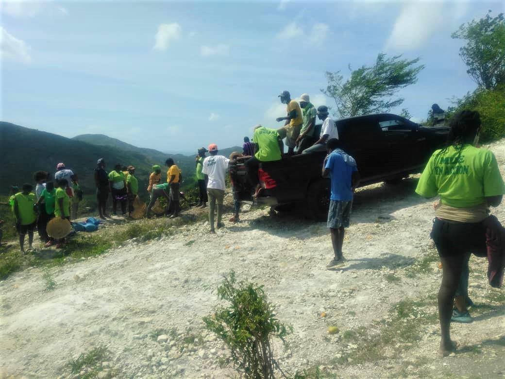 haiti mountain reforestation