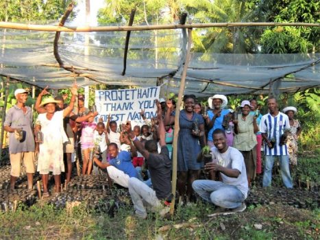 project haiti forestnation