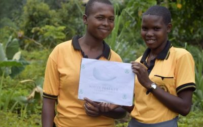 the white feather foundation reforesting tanzania